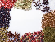 Frame of diferent spices on white background Stock Photos