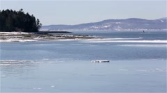 View of tip of Sears Island in Searsport Maine - stock footage
