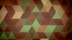 Triangle Polygon Loop 11 Forest - stock footage
