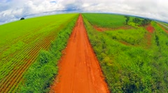 Aerial View from Soybean Plantation in Goias, Brazil - stock footage