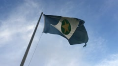 Flag of the State of Matogrosso, Brazil Stock Footage