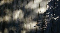 Shadow play on fence Stock Footage