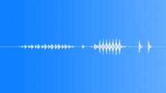 animals_wren_singing_01 - sound effect