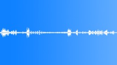 animals_whitethroat_singing_07 - sound effect