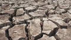 Dolly shot of dried and cracked earth Stock Footage