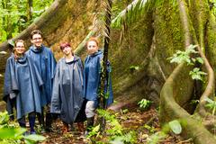 Group Of Four Tourists In Amazonian Jungle Against Huge Ceiba Tree Rain Ponchos Stock Photos