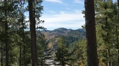 Deadwood Black Hills Stock Footage