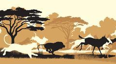 Lions hunting wildebeest - stock illustration