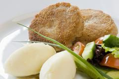 Cutlet and potatoes with vegetables Stock Photos