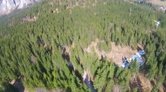 AERIAL: Flying over the  forest in the mountains Stock Footage