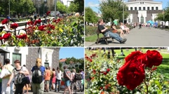 4K MONTAGE (compilation) - garden with red roses - people sit on benches - city  - stock footage