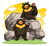 Two playful bears - stock illustration