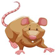 Playful rat Stock Illustration