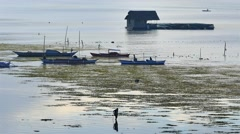 Tagbilaran City water side morning scenery Stock Footage