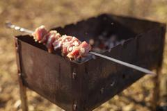 Cooking pork shashlik on skewer in mangal outdoor food Stock Photos