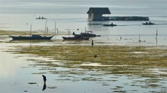 Tagbilaran City water side morning scenery, Philippines, Asia - stock footage