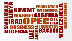 OPEC - The Organization of the Petroleum Exporting Countries Stock Footage