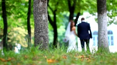 Wedding couple holding hands walking in summer green park. dolly shot Stock Footage