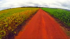 Aerial View from Soybean and Corn Plantation, Brazil Stock Footage