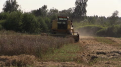 Farm combine thrash on village grain field. Harvest time. Stock Footage