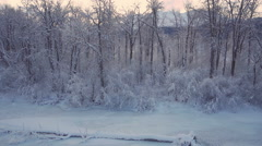 Aerial Approach and Pan Right Snowy Birch Forest in Winter over Rive Stock Footage