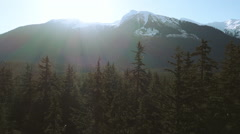 Aerial Rising Up Over Alaskan Scenic Forest with Sunflare over Mount Stock Footage