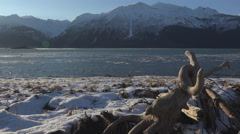 Chilkat Inlet Mountains Floating Ice in High Wind Slide Past Driftwo Stock Footage