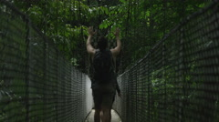 Wide shot of couple crossing hanging bridge in jungle / Arenal, Costa Rica - stock footage