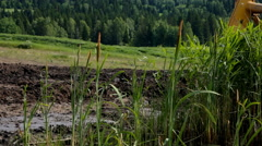 Close up view of bulldozer tractor works at moving soil in marshland Stock Footage