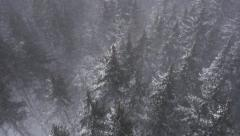 Flying Over Winter Forest in Blinding Snowstorm Aerial Stock Footage