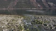 Following Mountain Stream as it Empties into Sea Lutak Inlet Alaska. Stock Footage