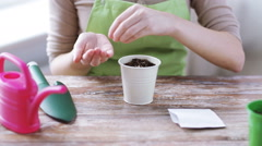 Close up of woman sowing seeds to soil in pot Stock Footage