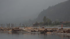 Logging Operation Floating Log Rafts in River Foggy BC Pullback HD Stock Footage