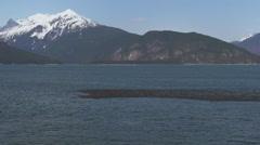 Raft of Surf Skoters in Outer Lutak Scenic Alaska - stock footage