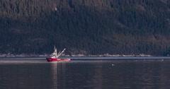 Red Fishing Boat Crabbing on Lynn Canal Alaska with Gulls 4K Stock Footage