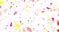Flower petals pink tornado Dw 4K Footage