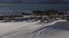 Snowy Coastal Scenic Low Angle Chilkat Rocks and Driftwood Windy 4K. - stock footage