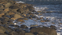 Splashing  Waves and Froth on Sunny Rocky Shore and Gull minor tilt Stock Footage