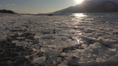 Sunlit Ice Fragments on Chilkat Beach Shore 4K Stock Footage
