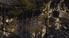 Water Rivulets Running Off Sun Speckled Mossy Cliff dolly right 4K Stock Footage