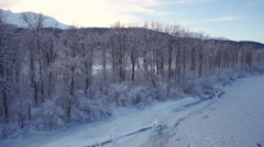Winter Aerial Alaska Frozen Bare Trees over Ice Patterns Scenic - stock footage