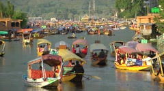 Many shikaras late afternoon on Dal Lake,Srinagar,Kashmir,India Stock Footage