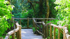 HD: Small wooden bridge in rain forrest, Thailand. 1080 - stock footage
