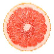 Stock Illustration of Grapefruit Fruit Slice Pixel