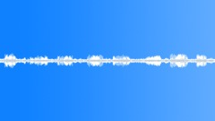animals_turtle dove_calling_01 - sound effect
