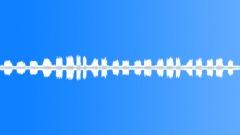 Animals_turtle dove_calling_02 Sound Effect