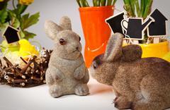 Easter bunny - stock photo