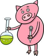 piglet at chemistry cartoon illustration - stock illustration