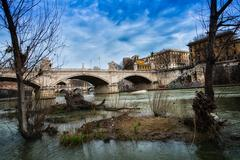 Small islets, and plants in the river Tiber in Rome Stock Photos