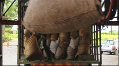 Bags with tea leafs moved by transportation line at the tea factory. Stock Footage